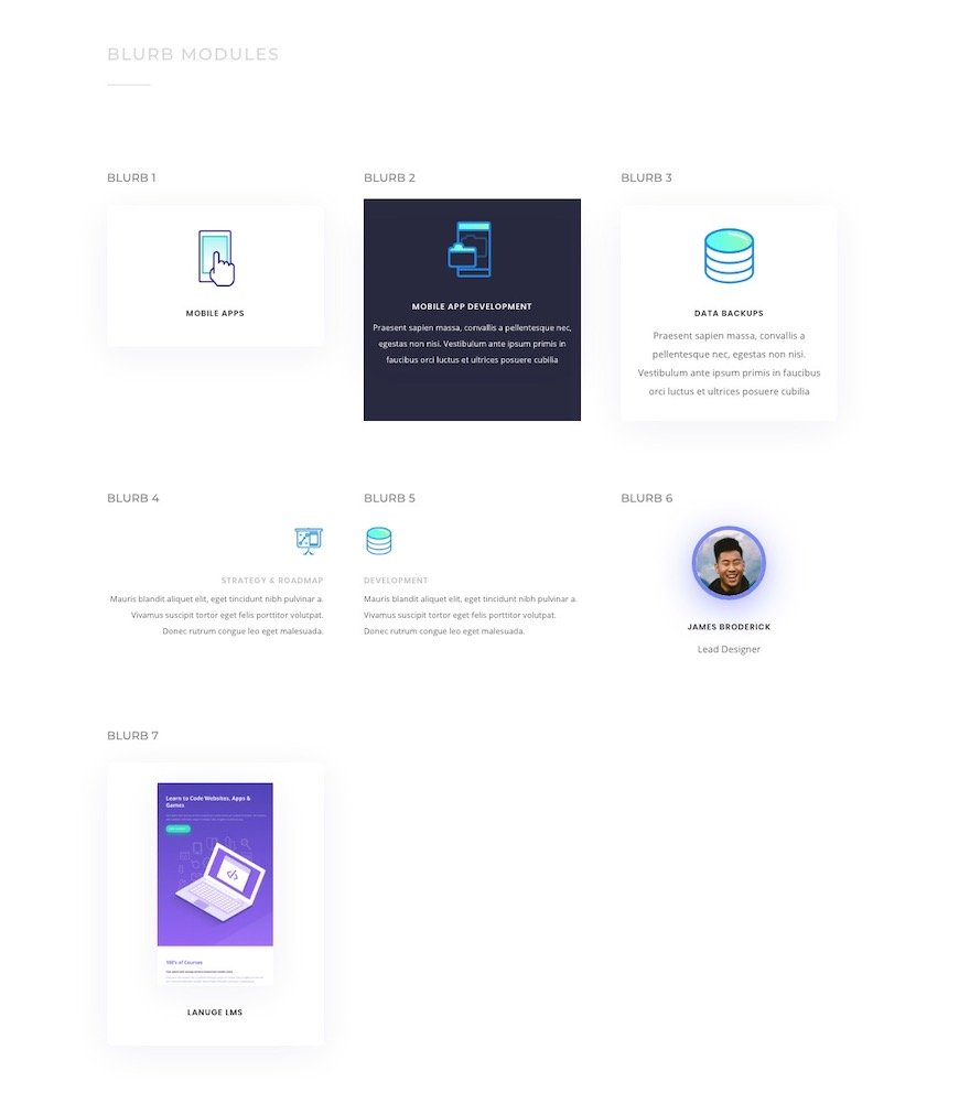 download-a-free-global-presets-style-guide-for-divis-app-developer-layout-pack-6 Download a FREE Global Presets Style Guide for Divi's App Developer Layout Pack