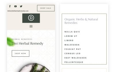 Get a FREE Header & Footer for Divi's Herbal Remedy Layout Pack