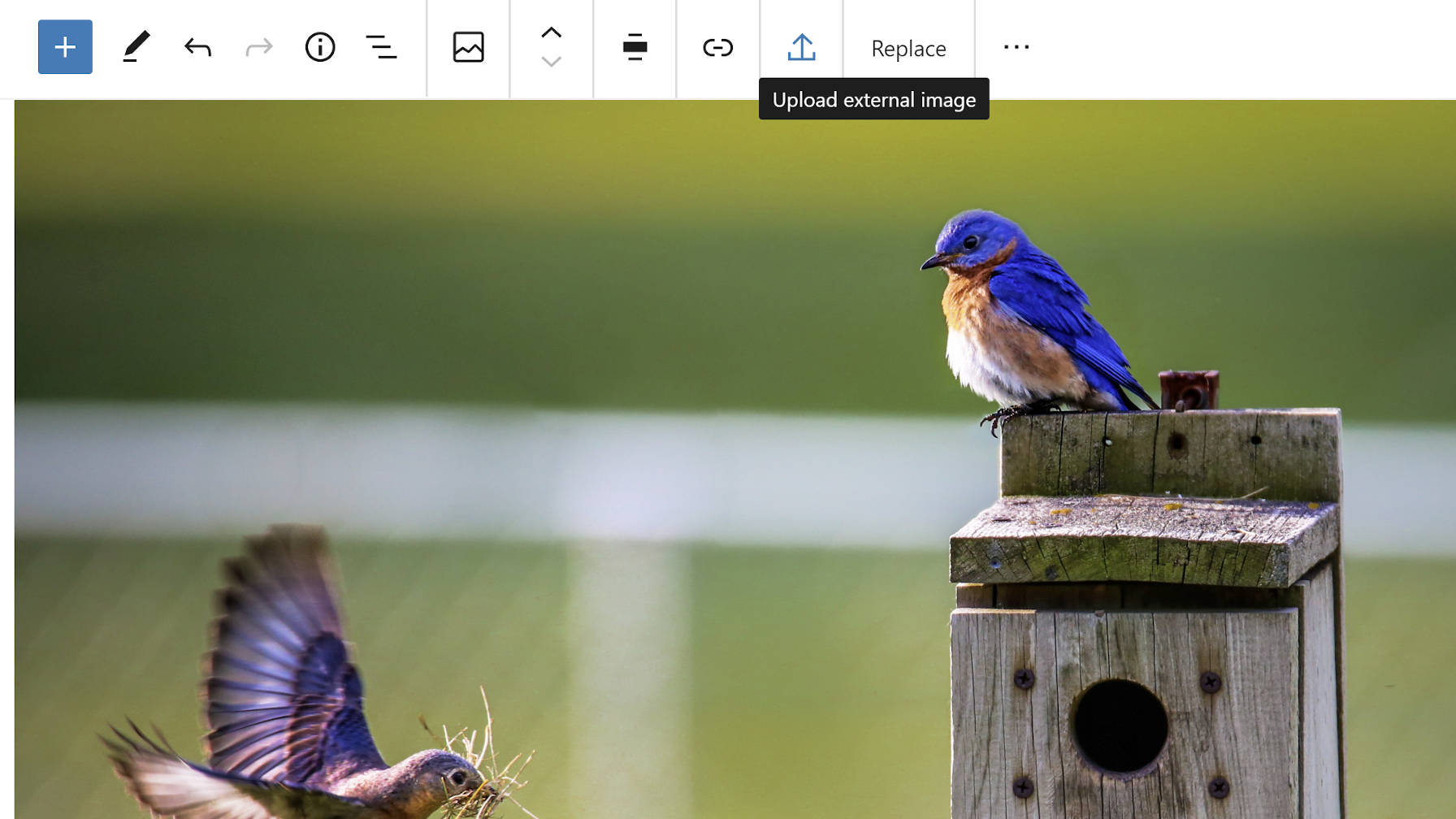 gutenberg-8-5-adds-single-gallery-image-editing-allows-image-uploads-from-external-sources-and-improves-drag-and-drop Gutenberg 8.5 Adds Single Gallery Image Editing, Allows Image Uploads From External Sources, and Improves Drag and Drop