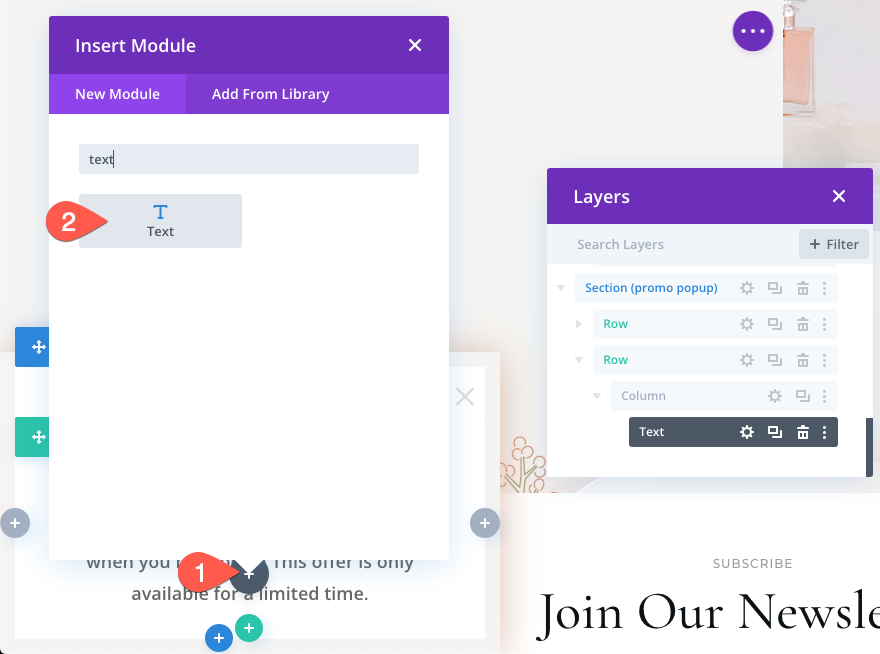 how-to-retarget-abandoned-carts-with-a-promo-popup-using-divis-condition-options-22 How to Retarget Abandoned Carts with a Promo Popup Using Divi's Condition Options