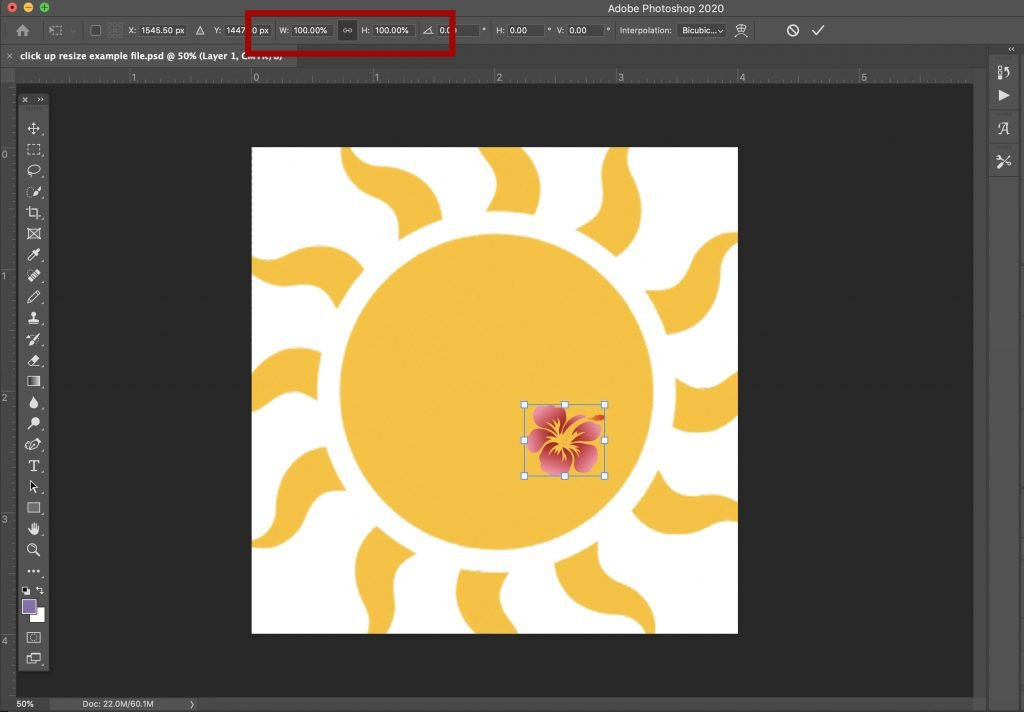 how-to-scale-transform-and-resize-an-object-in-photoshop-10 How to Scale, Transform, and Resize an Object in Photoshop