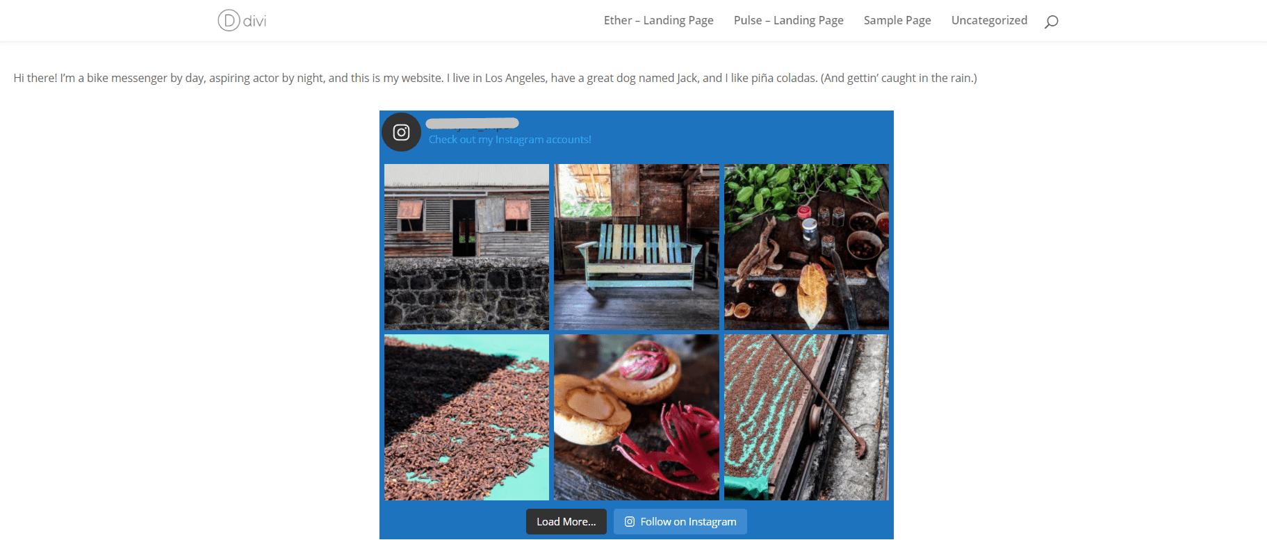 how-to-show-images-from-multiple-instagram-accounts-in-the-same-feed-on-wordpress-11 How to Show Images From Multiple Instagram Accounts in the Same Feed on WordPress