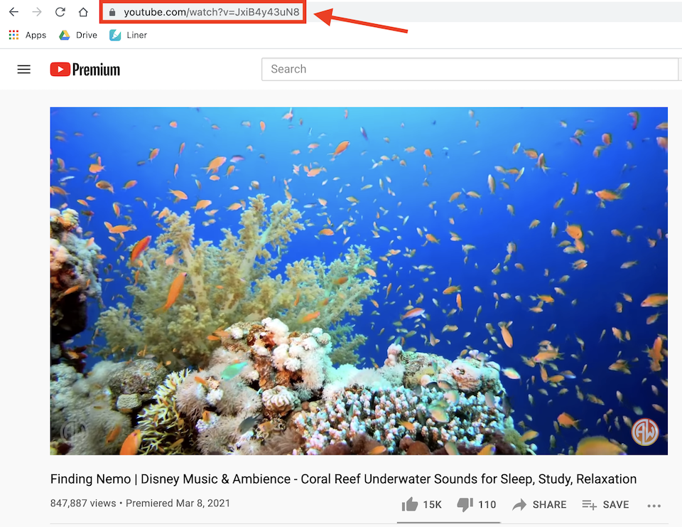 how-to-use-the-wordpress-youtube-embed-block-3 How to Use the WordPress YouTube Embed Block